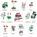 Provincial Flowers Jersey